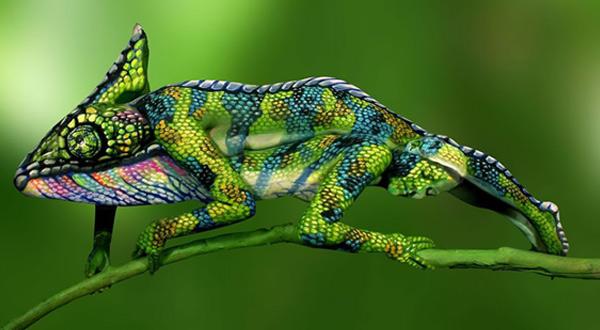chameleon-big