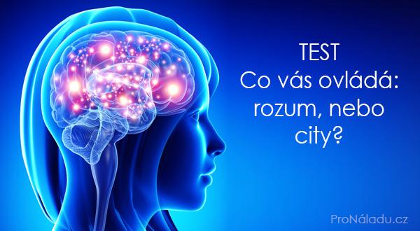 rozum-city1