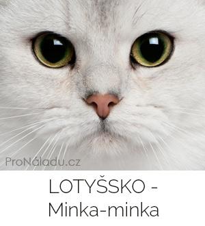 lotyssko