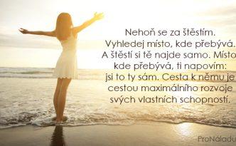 376-nehon