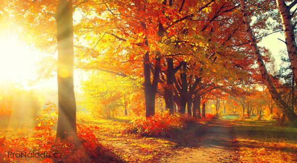 Výsledek obrázku pro podzim obrázek