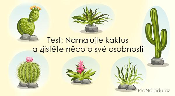namalujte-kaktus